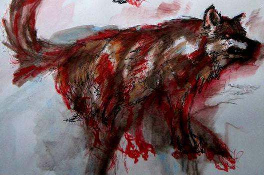 Spirit Wolf by xxsketch