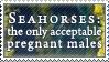 Seahorses by alaska-is-a-husky