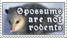 Opossums Aren't Rodents by alaska-is-a-husky
