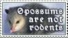 Opossums Aren't Rodents by alaska-is-a-husky