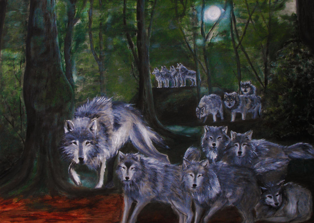 Nymeria's Pack(ASoIaF) by YvyB13