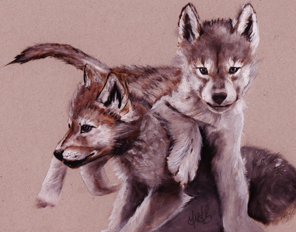 Wolf pups by YvyB13