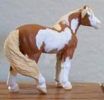 Pinto Mustang