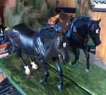 Both Longmire Horses