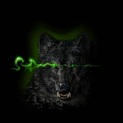 Lone_WolfGreen by klori