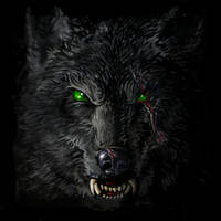 Lone_WolfClose_up