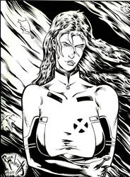 Rogue by PeterPalmiotti