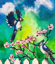 Blue Jay Bird Painting
