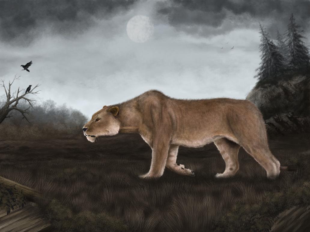 Lion Man Cave Art : Cave lion by mihin on deviantart