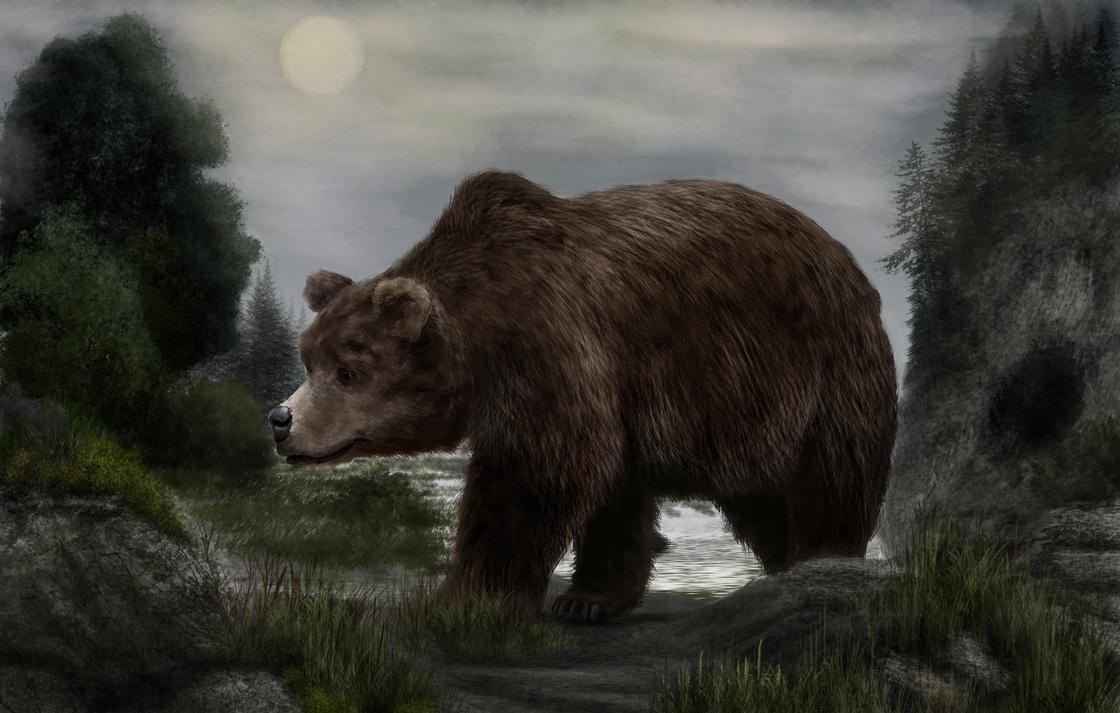نتيجة بحث الصور عن Ursus spelaeus