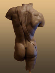 Study of the David's torso 2 by tecciztecatl