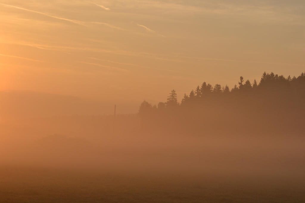 morning fog by Morriardy