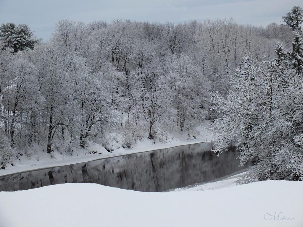 Winter dream by Melusine8