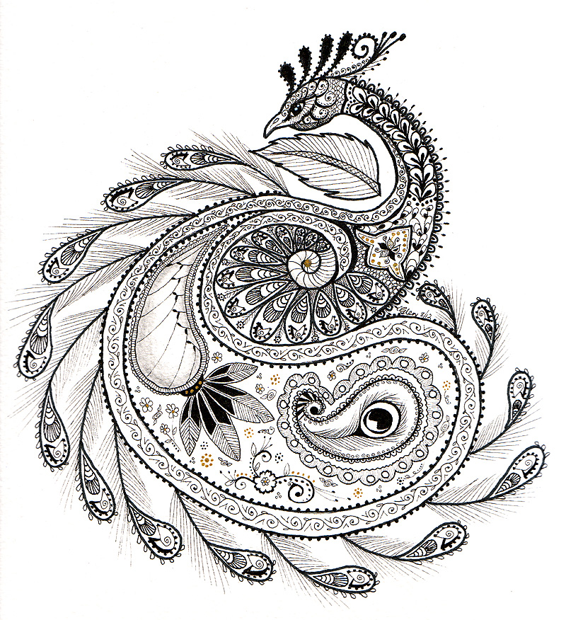 paisley_peacock_by_ladyegg-d5auzyk.jpg (800×876) | Paisley ...