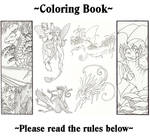 Coloring book rules