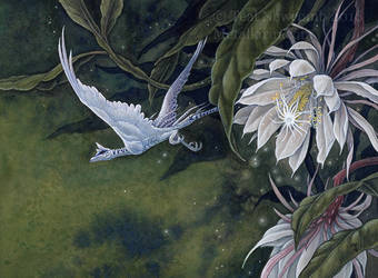 Epiphyllum by thedancingemu