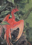 Tropical Dragon ACEO Commission