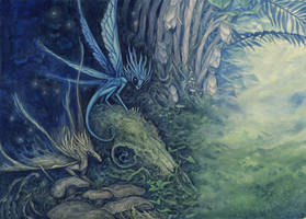 Encounters with the Imaginary - Cordyceps Faeries