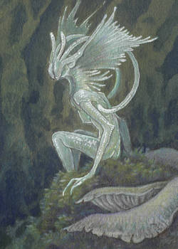 ACEO Deep Forest Faerie