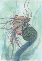Flower Fae Aphid Predator