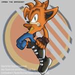 Crash Bandicoot.: Sonic Style