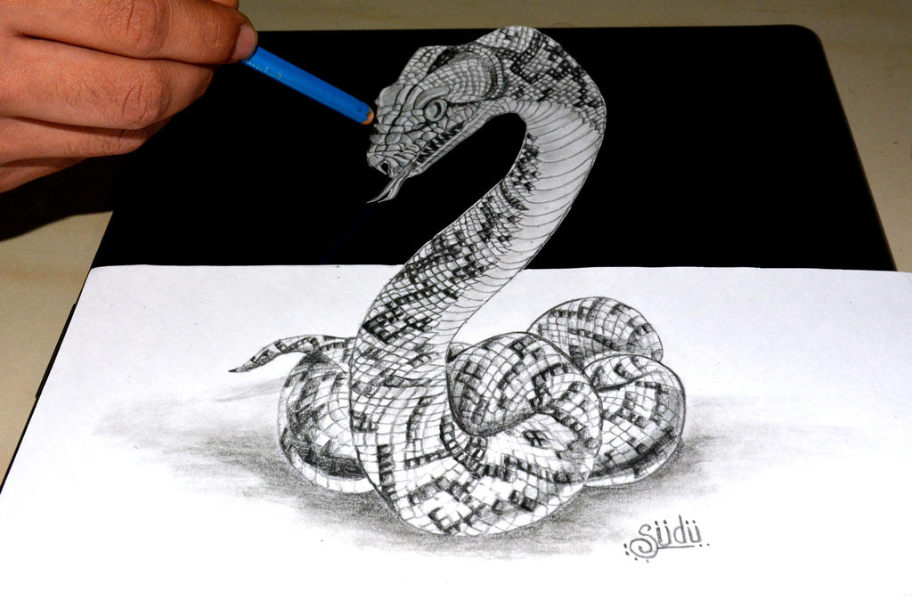 3D Anamorphic Snake by...