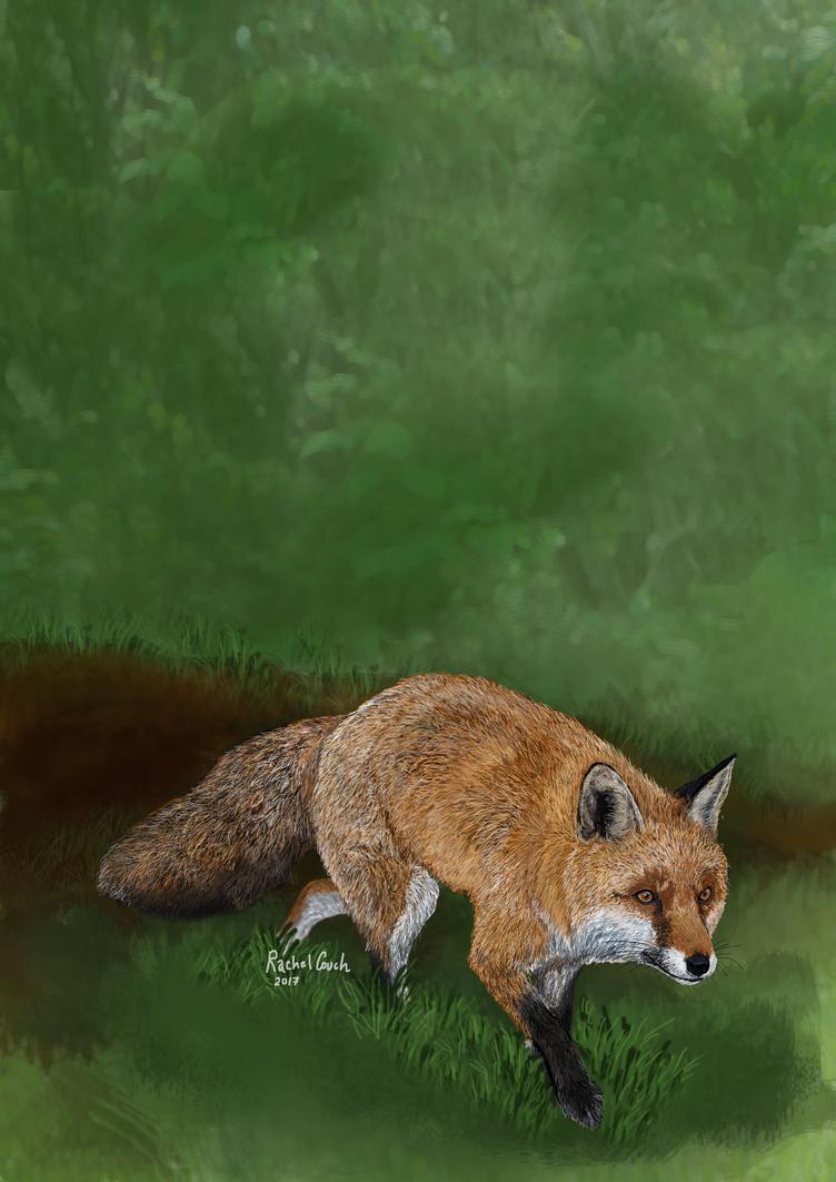 Mrs Fox by rlcillustration