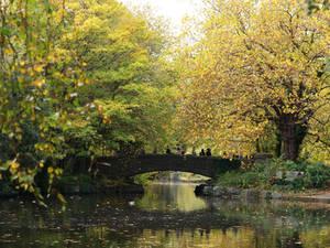 October 20th, St. Stephen's Green, Dublin