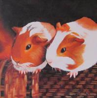 Guinea pig friends by LaniceraCaprifolium