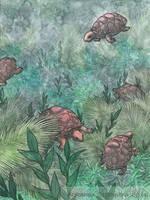 Underwater Tropics XXXV (the last one!) by AdrStefanska