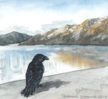 Land of ravens (3/3)