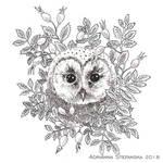 Autumnal Owl