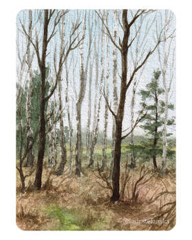 Forest sketch #2