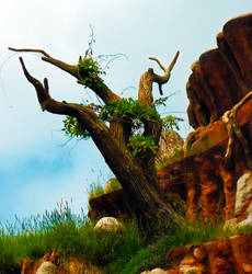 Twisted Tree - Splash Mountain by ashcro85