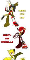 Sonic Riders - Team Relic