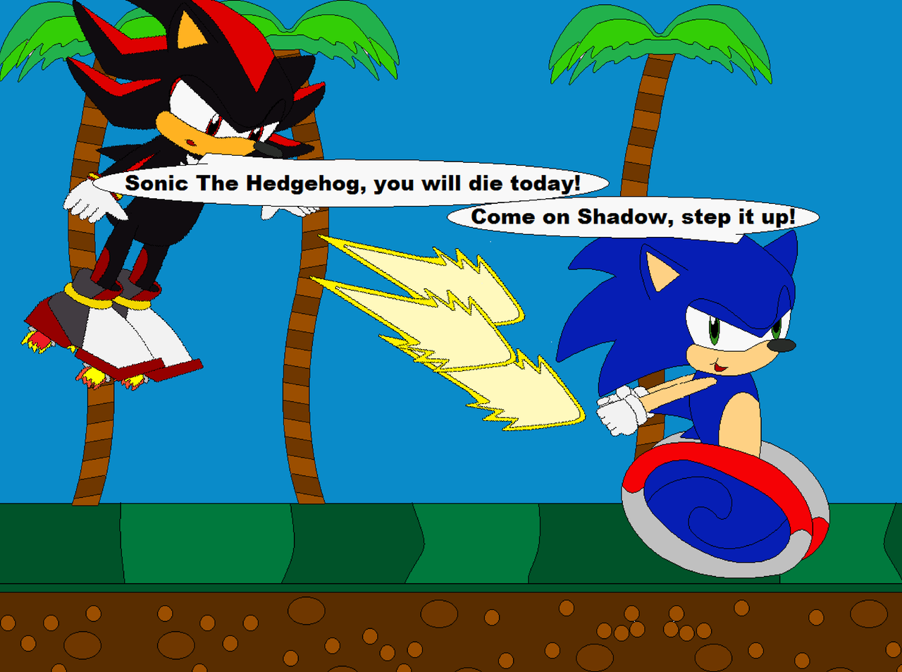 Shadow Ate Tails Cake