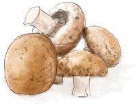 Mushrooms by torstan