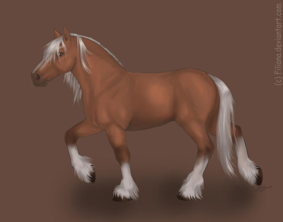 Epona by Filiana