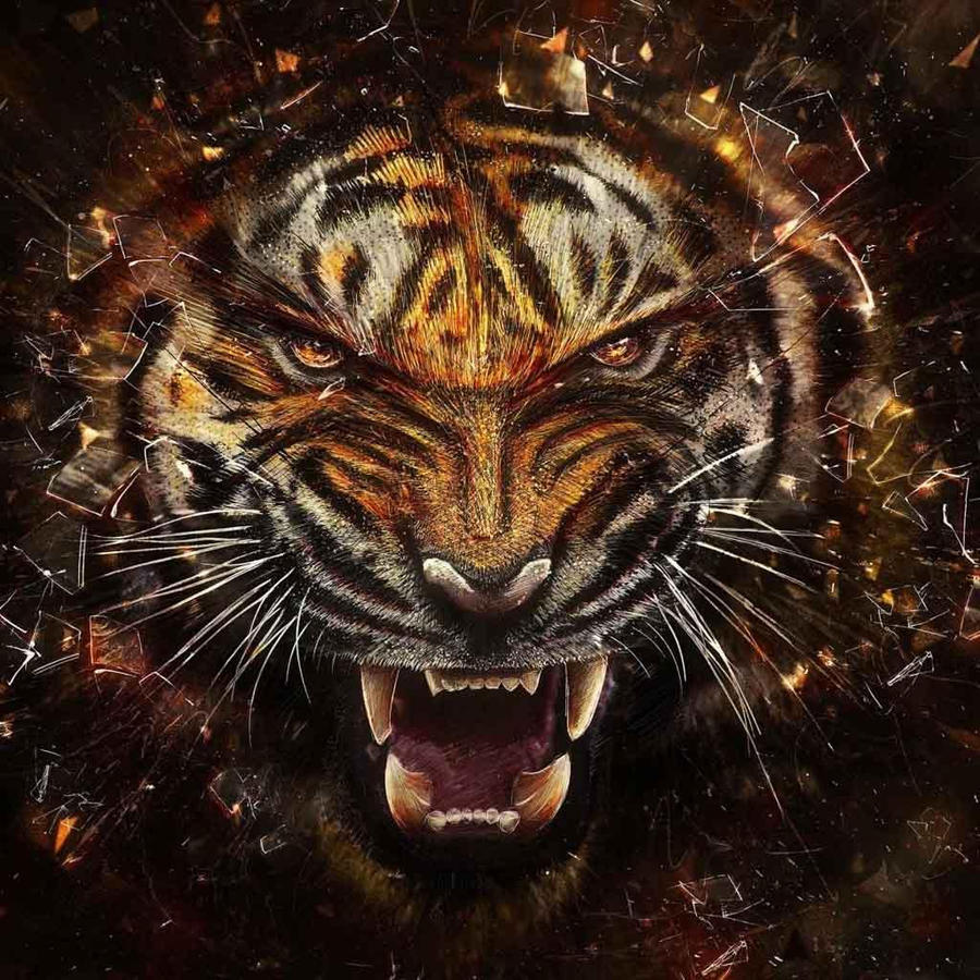 angry tiger by cherryfoxy69 on DeviantArt