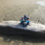 Meditating by Metalknightrider
