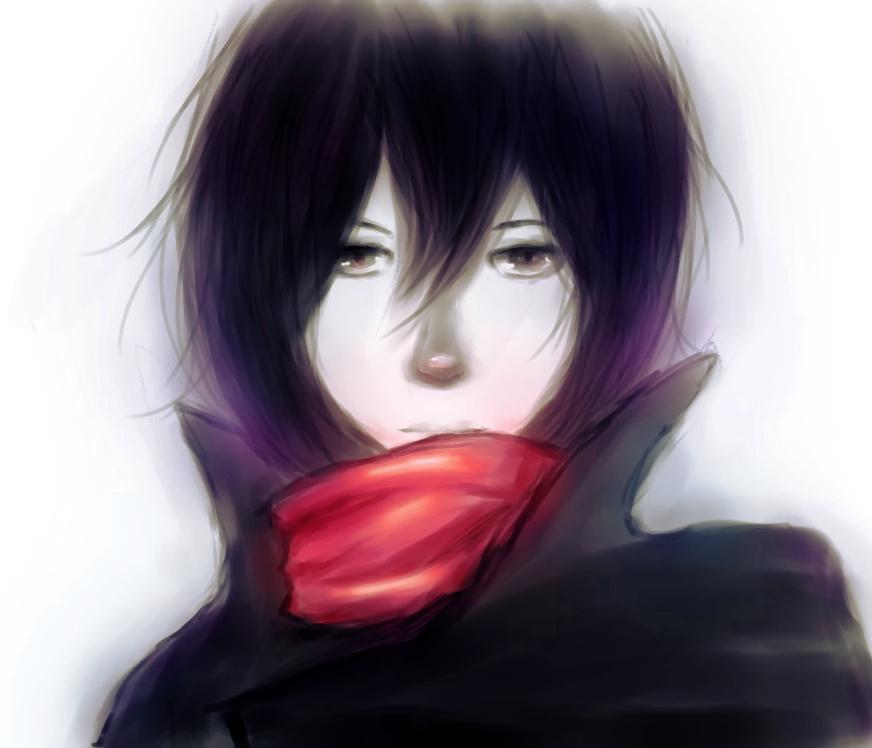 Mikasa by antichange