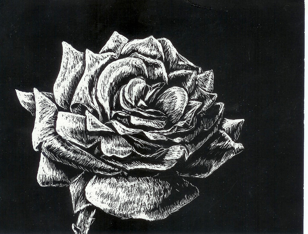 Frosted Rose by MystiqueDeep on deviantART