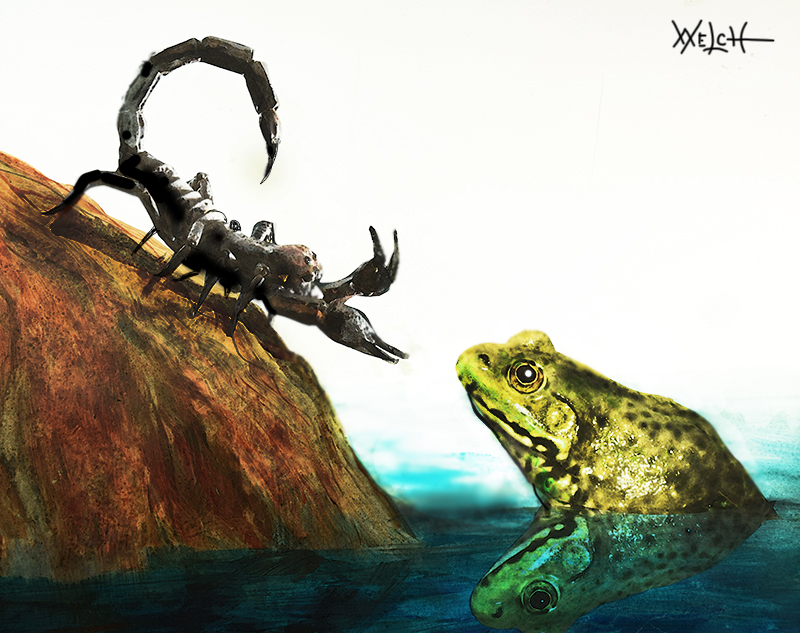 SCORPION and FROG by woodywelch on DeviantArt