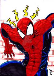 Spider Man Sharpies