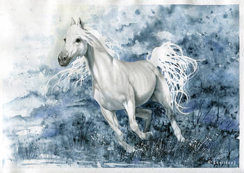 Horse by Laniidae7