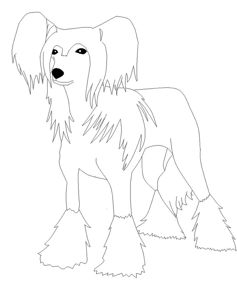 Line Art Dog : Dog lineart by roky on deviantart