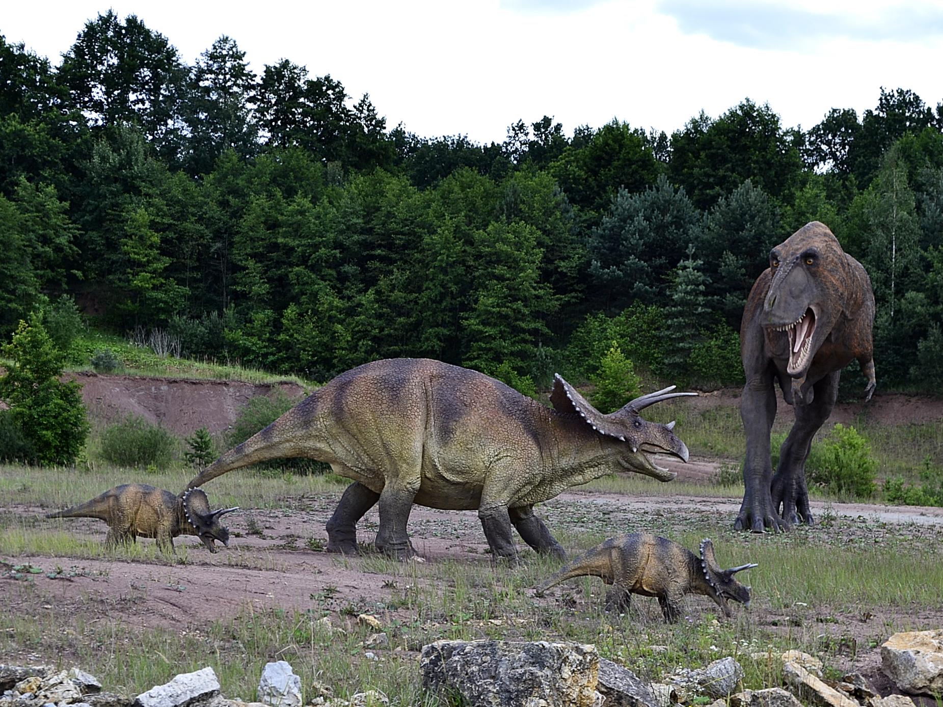 Dinosaurs by Roky320
