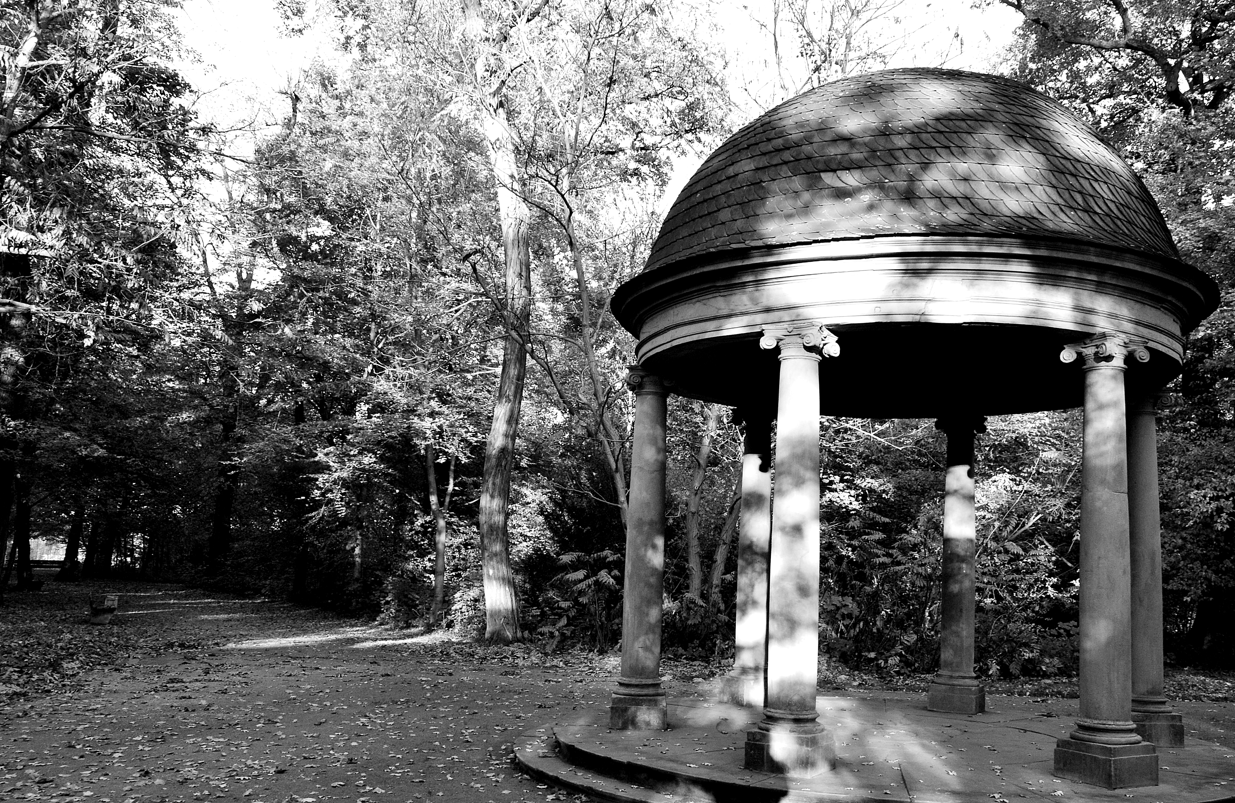 Park by Roky320
