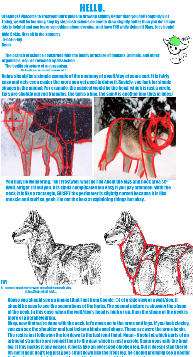 Wolf/Dog Drawing Tutorial Part 1 by frostwolf300 on DeviantArt