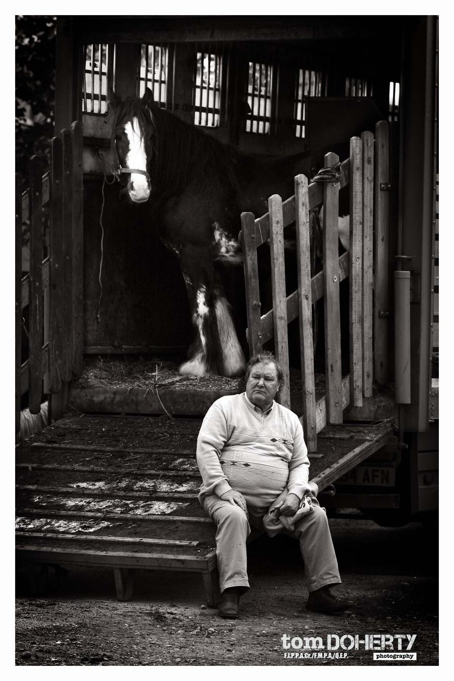 Ballinasloe Horse fair 9 by PicTd